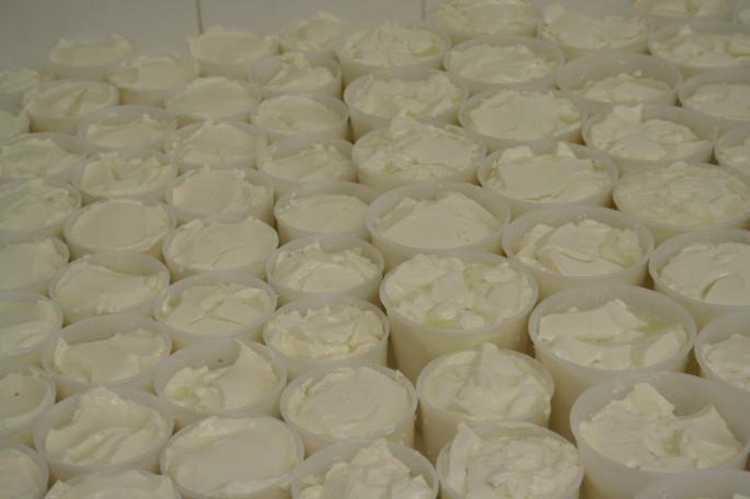 Egouttage des fromages