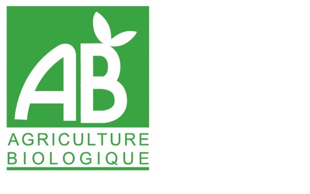Logo ab 1